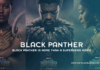 Black Panther Is More Than a Superhero Movie