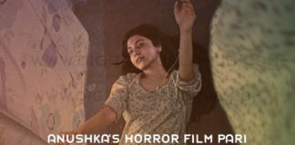Anushka Sharmas Horror Film Pari Box Office