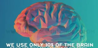 Do We Use Only Ten Percent Of The Brain
