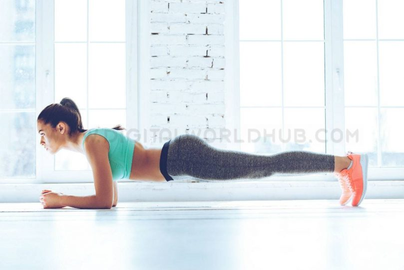 planks DWH6