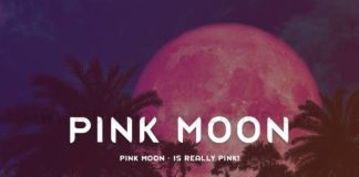 Pink Moon Is Really Pink