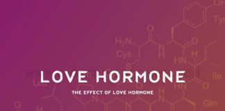 The Effect Of Love Hormone