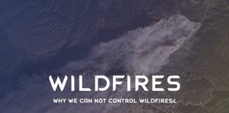 Why-We-Can-Not-Control-Wildfires