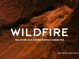 Wildfire-Is-A-Catastrophic-Disaster